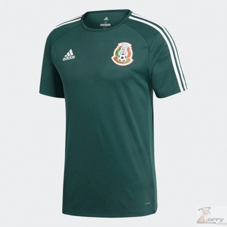 Jersye Adidas de Mexico de Entrenamiento